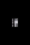 kujaku-16ss-20151102_022-thumb-660x989-481479
